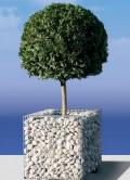 gabion planters prices