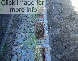 planters in gabions